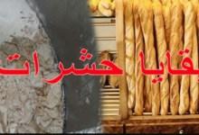 """Photo of خطير // مدير حفظ الصحة يكشف :""""58% من عينات الخبز تحتوي على بقايا حشرات"""""""