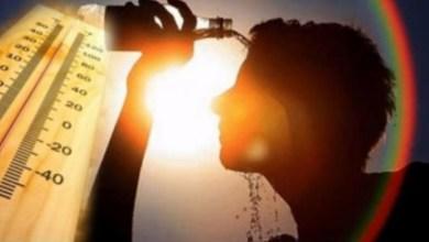 Photo of اليوم : الحرارة تتجاوز المعدلات العادية.. والرصد الجوي يحذر !