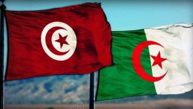 Photo of الرئيس الجزائري يتفاعل مع تصريحات قيس سعيد