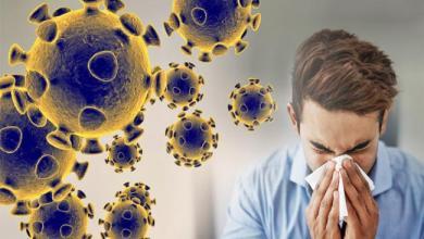 Photo of تسجيل إصابات بفيروس كورونا في تونس…مصدر من وزارة الصحة يوضح
