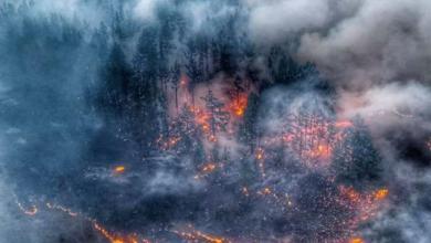 Photo of العالم في خطر أواخر 2020: احتراق «سيبيريا» لأول مرة بعد ارتفاع غريب في درجات الحرارة وفيروسات جديدة