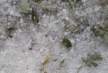 Photo of جبل مغيلة: تساقط كميات كبيرة من البرد