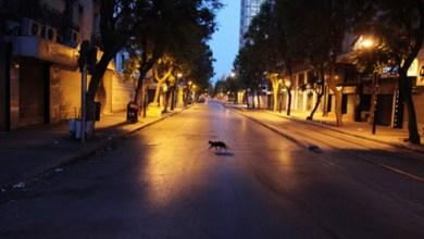 Photo of وزير الصحة: حجر صحي شامل في هذه المناطق