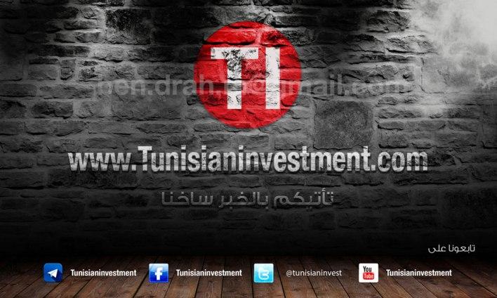 موقع الاستثمار التونسي