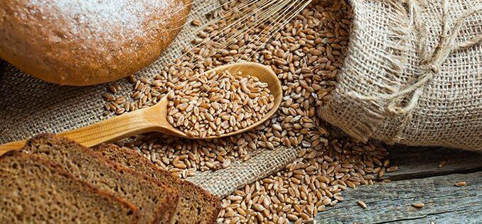 حساسية القمح - حساسية المعدة - السيلياك