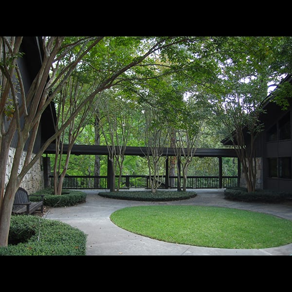 Crape myrtles and concrete paths at Northwest Presbyterian Church in Buckhead in Atlanta, Georgia, designed by Tunnell and Tunnell Landscape Architecture.