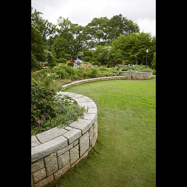 View of the Rose Garden at the Atlanta Botanical Garden