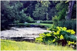 Thorpland Hall gardens