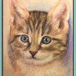 Cat Portrait by Thomas Adamski