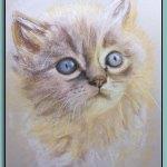 Inquisitive Cat Portrait