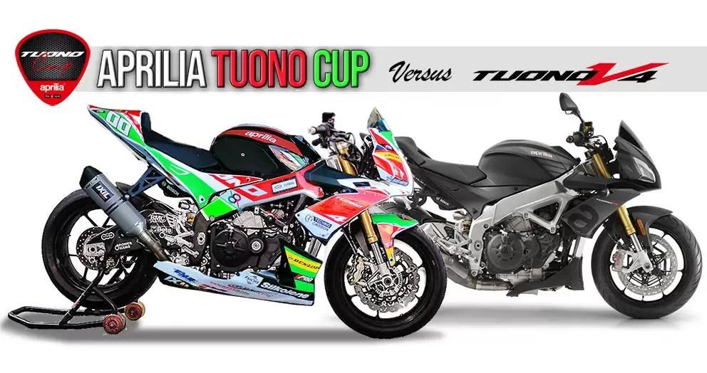 Aprilia Tuono CUP vs Aprilia Tuono V4 1100 RR