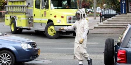 http://diarioadn.co. Fue interrumpido el tránsito en Medellín por la presencia de un enjambre de abejas, que picaron a varias personas.