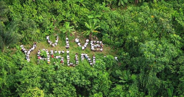 Siguen los ecologistas unidos por el Yasuní