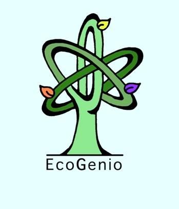 Nuestro proyecto EcoGenio