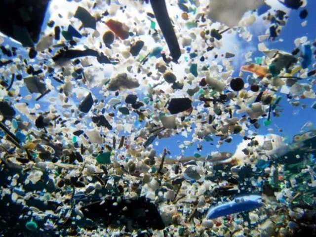 Un mundo de plasticos. Foto http://www.raceforwater.com