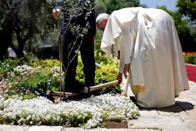 El Papa Francisco atento a su jardin