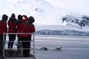 Científicas en la Antártida