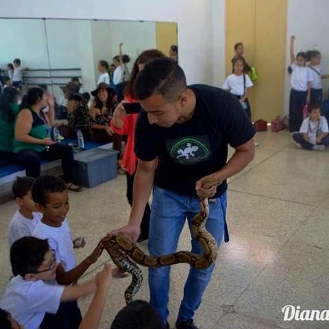 Gustavo Terrarium dicta charlas en las escuelas para que los niños conozcan las serpientes. Foto Diana Granchelli