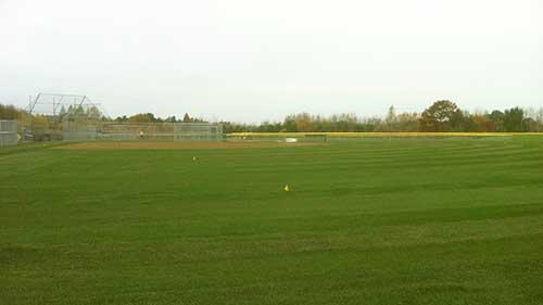 baseball and multipurpose field sod installation