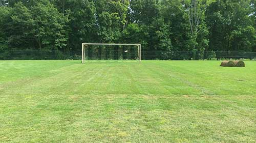 installation of natural turf on a soccer field