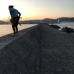 【目印落とし込み】神戸渡船 de 沖堤はしごするも((((;゚Д゚))))ガクガクブルブル