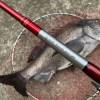 【厳寒期落とし込み】フカセ釣りに負けない気持ちでヘチ釣りしてきました!!