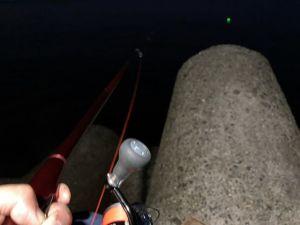 日本鋼管夜釣り