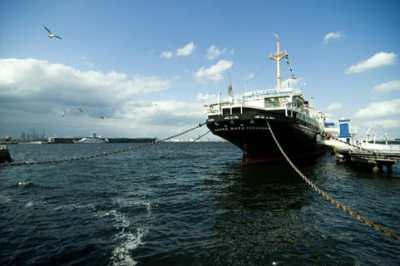 神奈川県でフライフィッシングのできる管理釣り場はここ!
