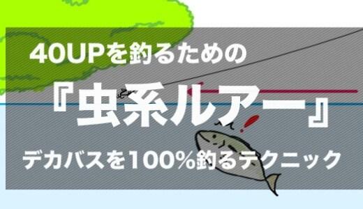 【夏のバス釣り】40UPのバスを釣りたければ『虫系ルアー』を投げるべし!虫縛りすれば100%デカいのが来るぞ!