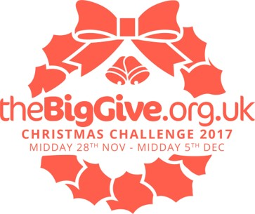 The Big Give Christmas Challenge logo