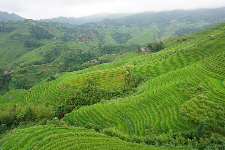 Top attractions in China - Longsheng Longji