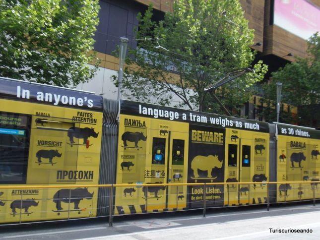 MELBOURNE. CUIDADO CON LOS TRANVÍAS