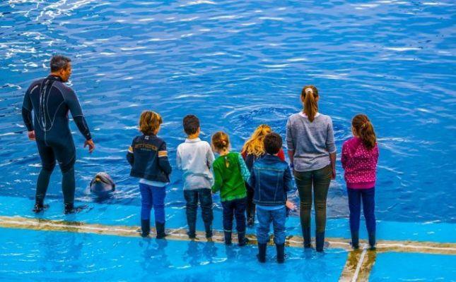 5 propuestas para disfrutar Valencia con niños