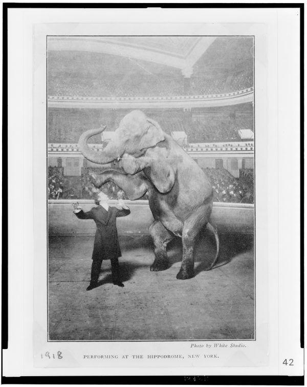 """""""Houdini. Las leyes del asombro"""". Espacio Fundación Telefónica"""