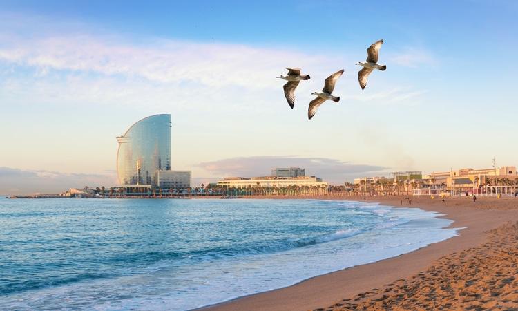 Linda praia localizada em Barceloneta