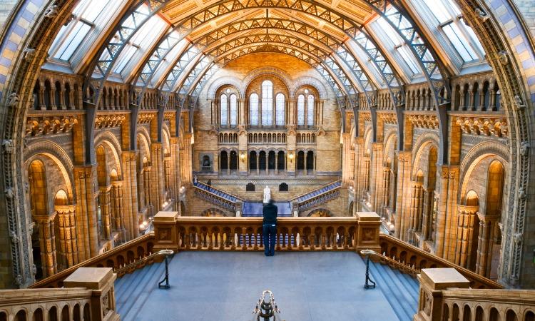 Museus em Londres História Natural