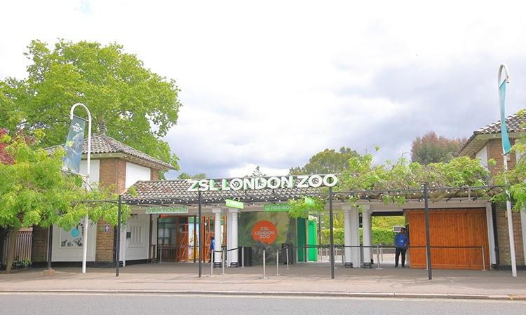 entrada do zoológico de londres