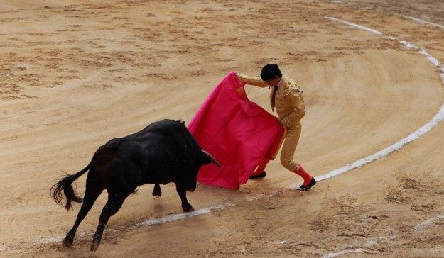 Corridas de toros en Colombia, diversión a la antigua y polémica