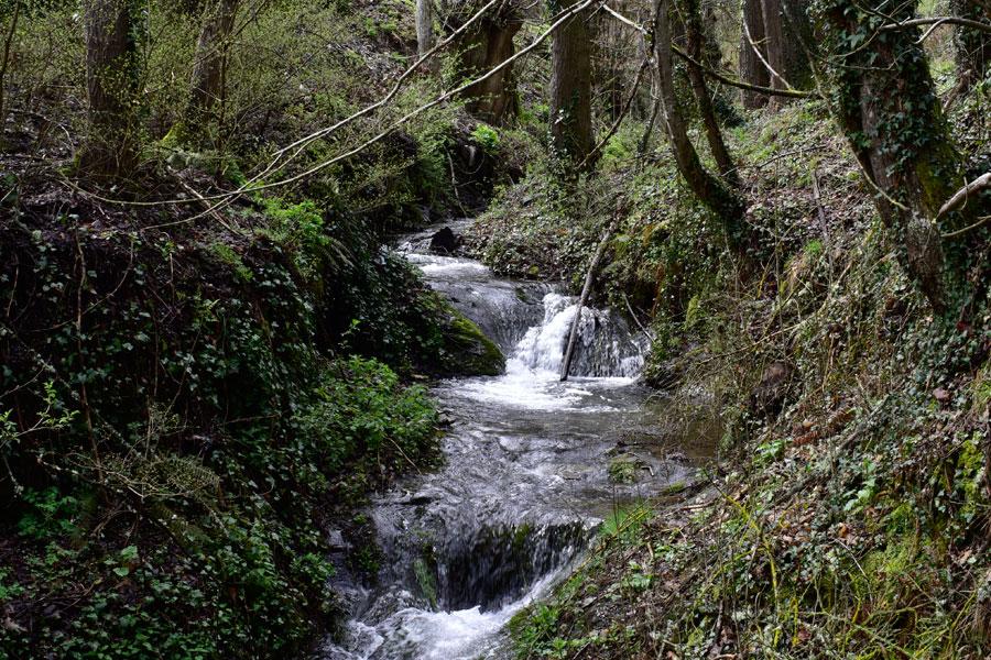 Río Oza