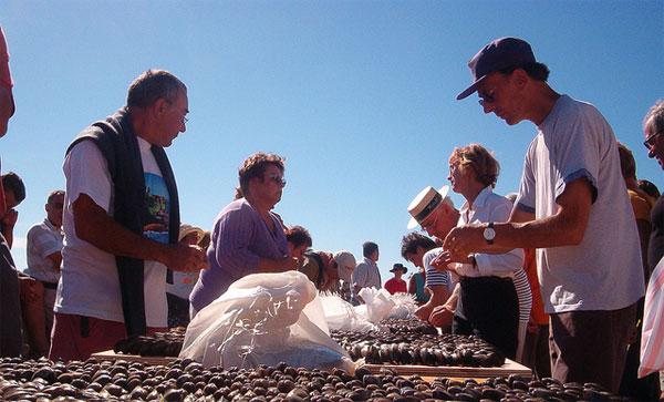 35 ª Festival de las ostras y los mejillones de Boucholeurs
