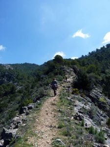 ruta-fortines