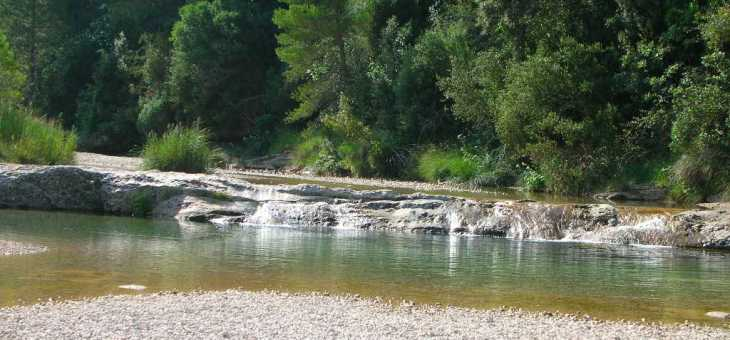 Regulación de los espacios naturales El Parrizal y La Pesquera 2017