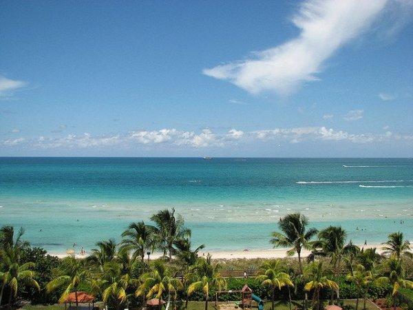 Miami, amor a primera vista. Foto: Dannebrog