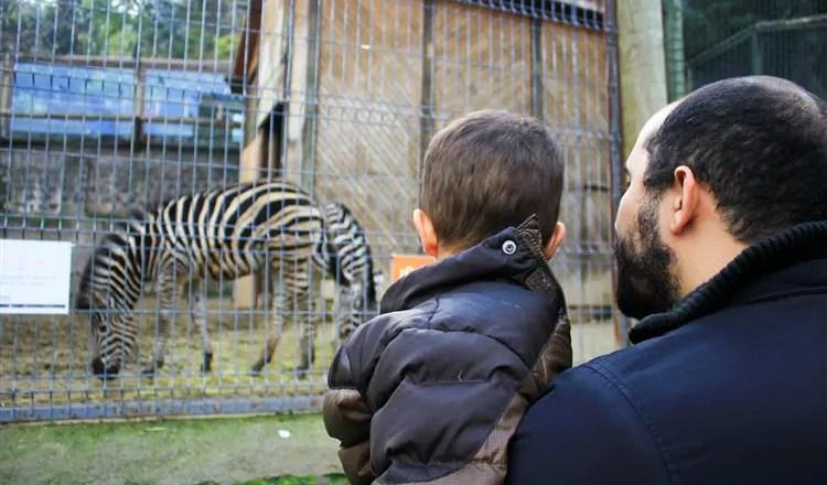 Zoológico de Santiago