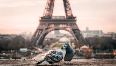 36 atrações imperdíveis em Paris
