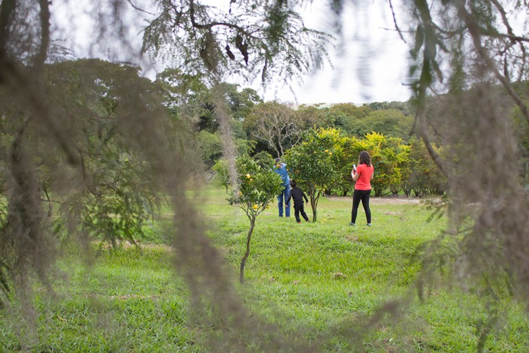 Parque do Vô Ivo no Hotel Fazenda Itáytyba em Tibagi