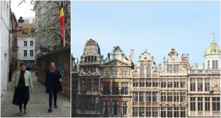 Brussel gengid