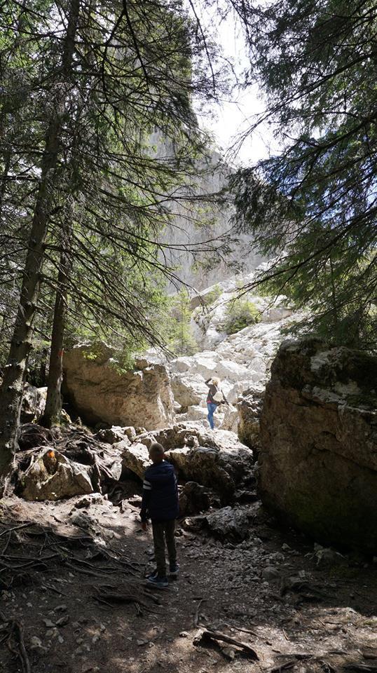 Bucovina - pietrele doamnei climb
