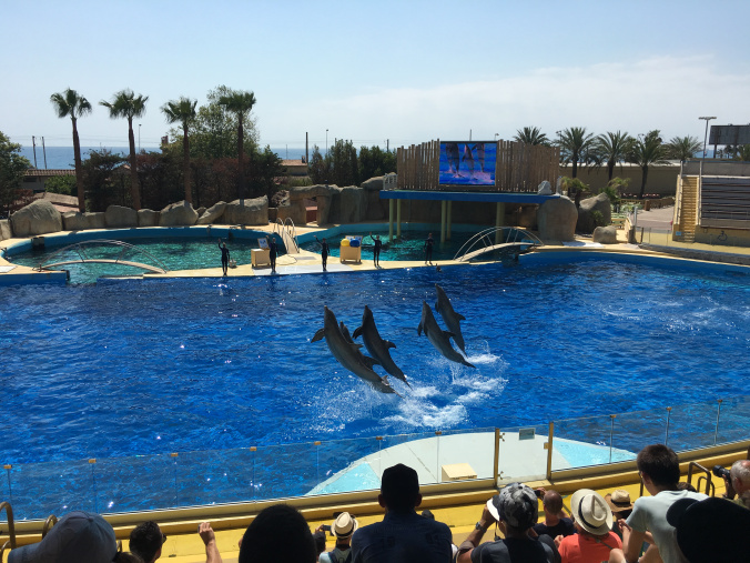 Cannes - marineland antibes 3