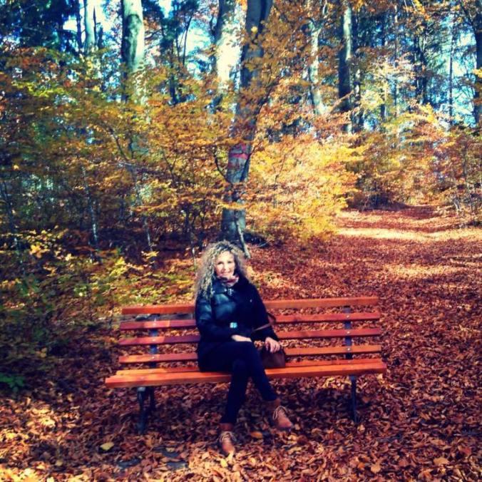 Dino Parc - autumn